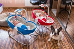 was ist beim kauf einer gebrauchten babywippe zu beachten. Black Bedroom Furniture Sets. Home Design Ideas