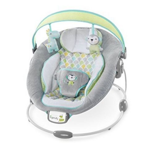 Ingenuity Soothe and Delight Bouncer Savvy Safari